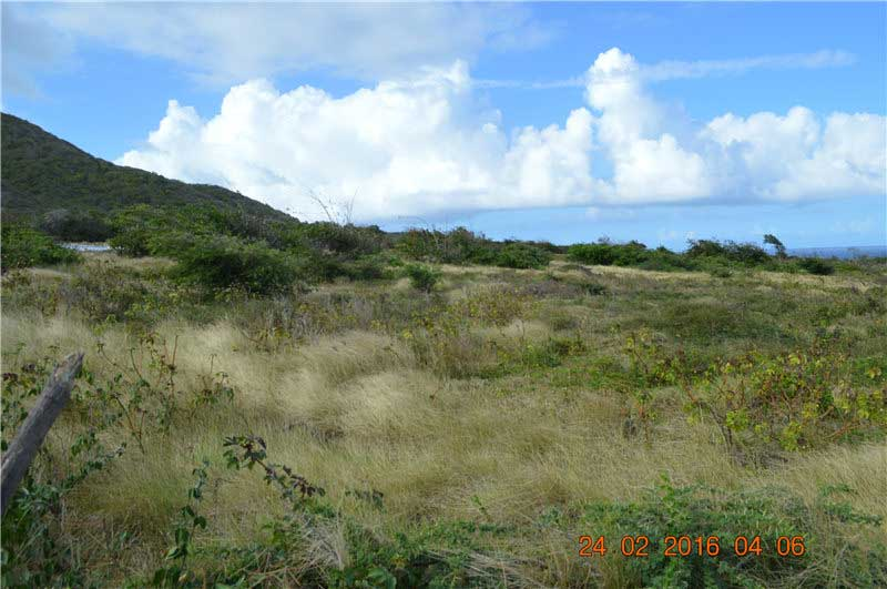尼維斯島可買賣土地 30英畝