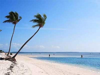 瓦努阿圖入籍方案